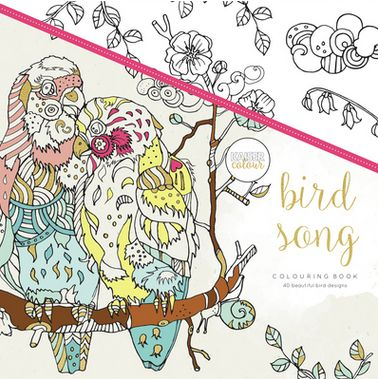Bird Song - Spread your wings and fly with some of the world's most amazing birds. Bird Song is filled with 40 beautiful bird designs, everything from a flamingo, to a parrot to a woodpecker – we are sure you will find many of your favourites inside. Let your imagination soar as you add colour to these doodled illustrations, so that they really can fly off the page.