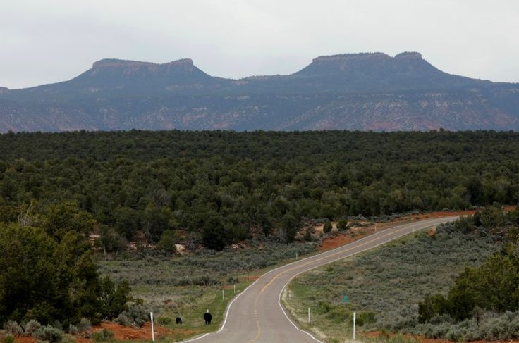 U.S. President Donald Trump will shrink the size of two national monuments in Utah, U.S. Senator Orrin Hatch of Utah said on Friday, opening more land to drilling and mining over objections by Native Americans living nearby.