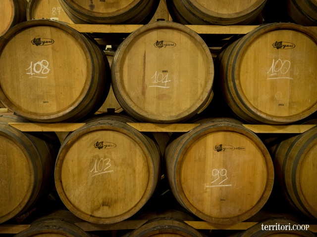 Il vino ha bisogno di riposare. #vino #Fazio #produzione