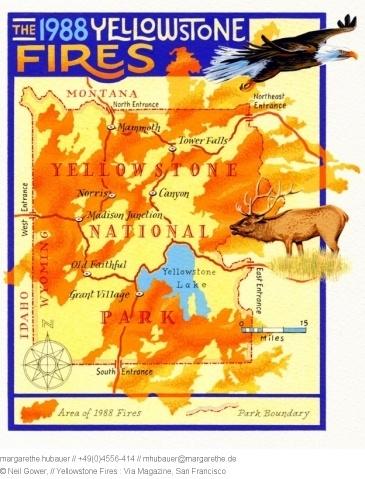 2007 // Yellowstone Fires : Via Magazine, San Francisco - Neil Gower
