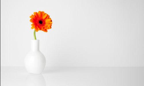 İyiliğiniz için minimalizm