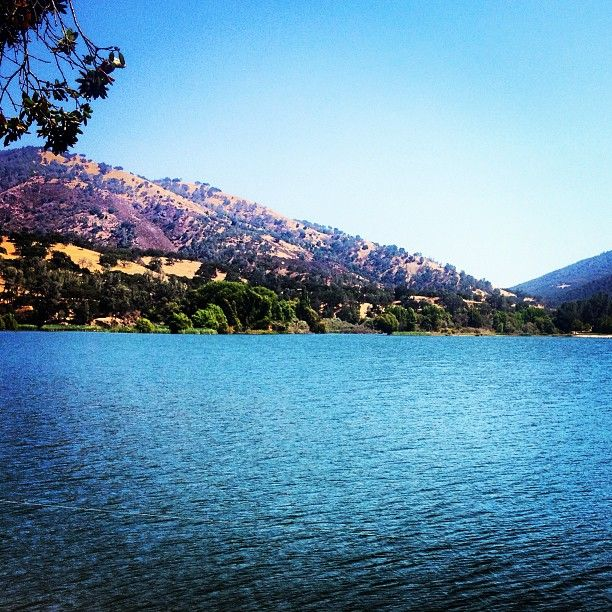 Lake Del Valle, Livermore, CA.  Photo by: tatyanna_23