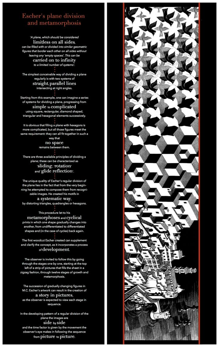 Escher's Plane Division and Metamorphosis Poster - Front and Back