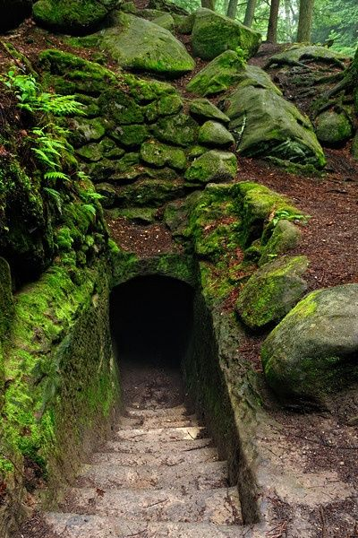 Path tunnel in Old Mans Cave gorge in Hocking Hills State Park