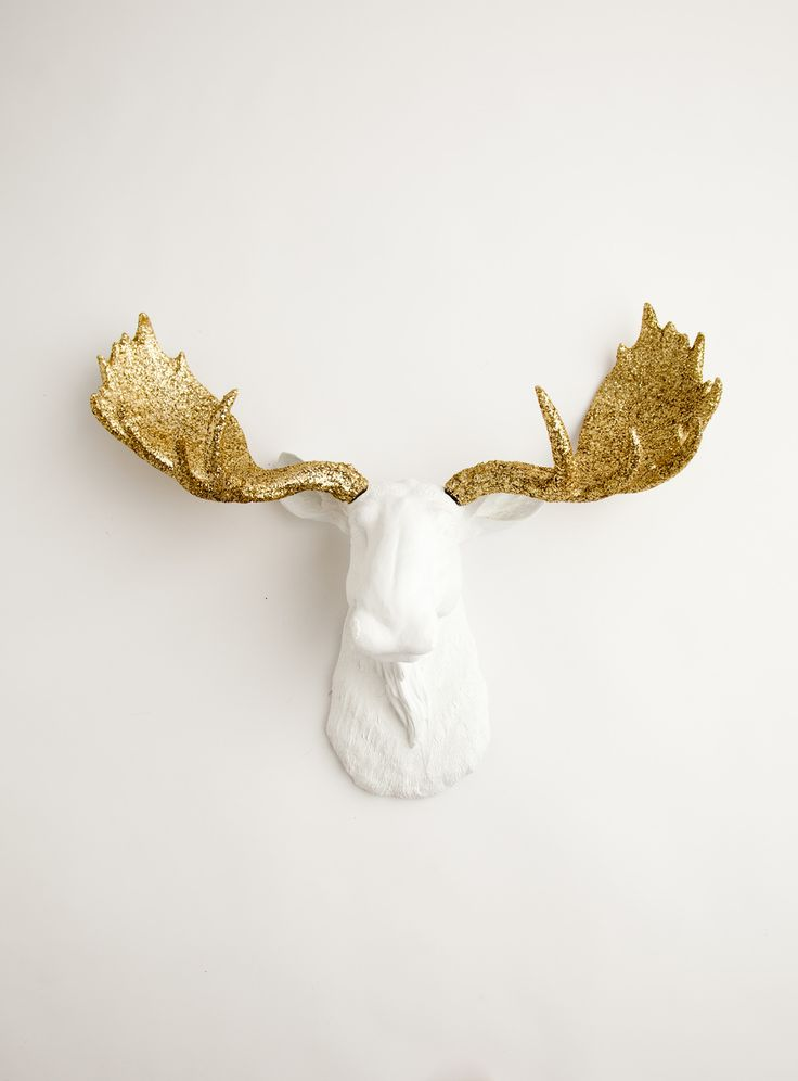 The Alfredo white moose head wall decor with gold glitter antlers. Fine resin moose animal head mount by White Faux Taxidermy.