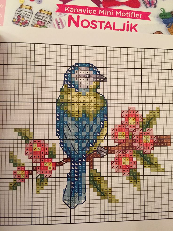 Vintage cross stitch chart bird