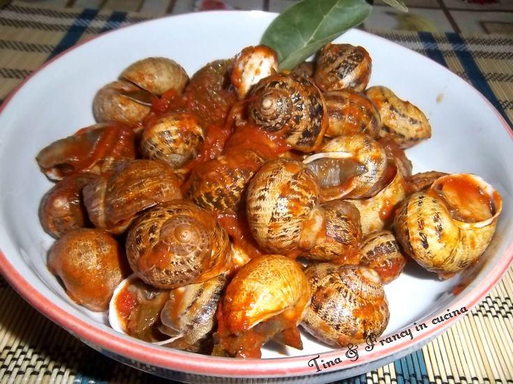 le lumache alla Sarda; numerose le ricette, sono un piatto prelibato è molto saporito, piccante, mangiate il giorno sono ancora più buone!!!