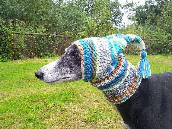 Greyhound/Galgo Pixie Hat Pixie styles, Hello winter and ...