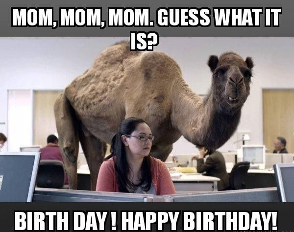 Happy Birthday Mom Meme Funny                                                                                                                                                                                 More
