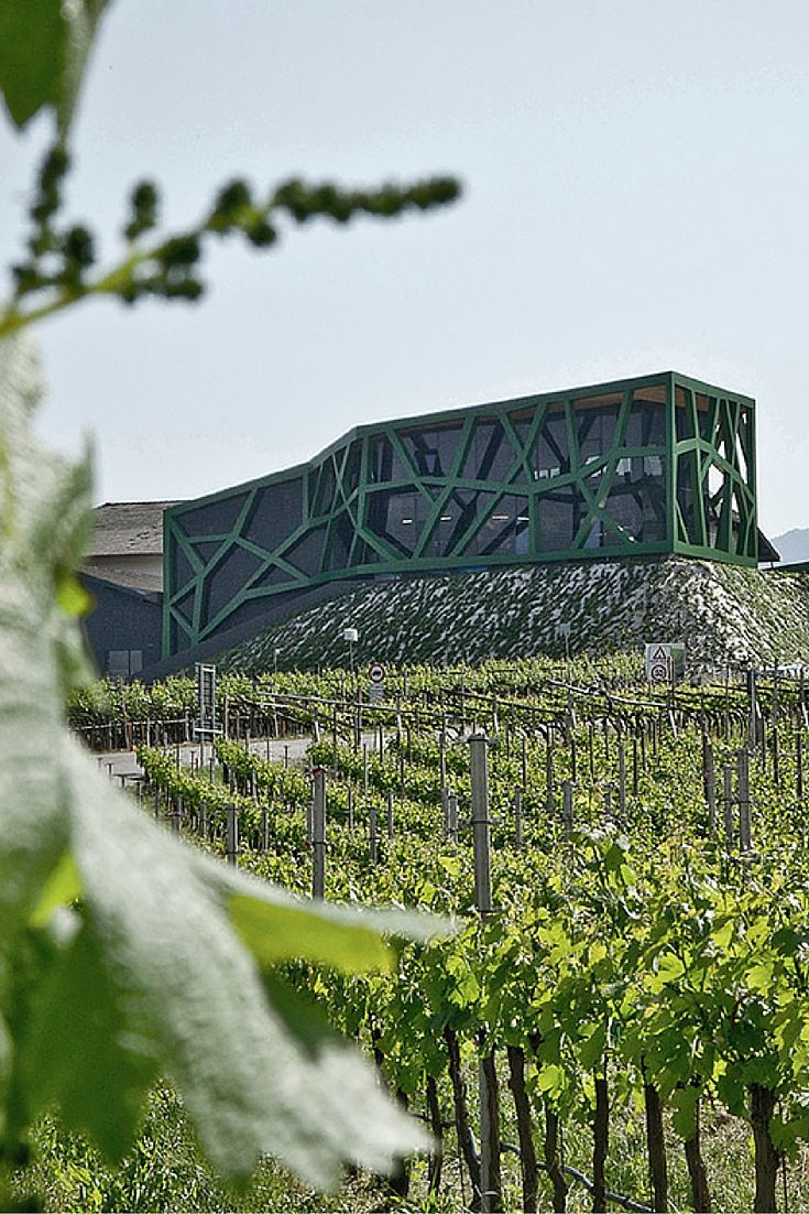 #CantinaTramin The structure of the architect Tscholl evokes the shape and the color of the #vines of #Tramin