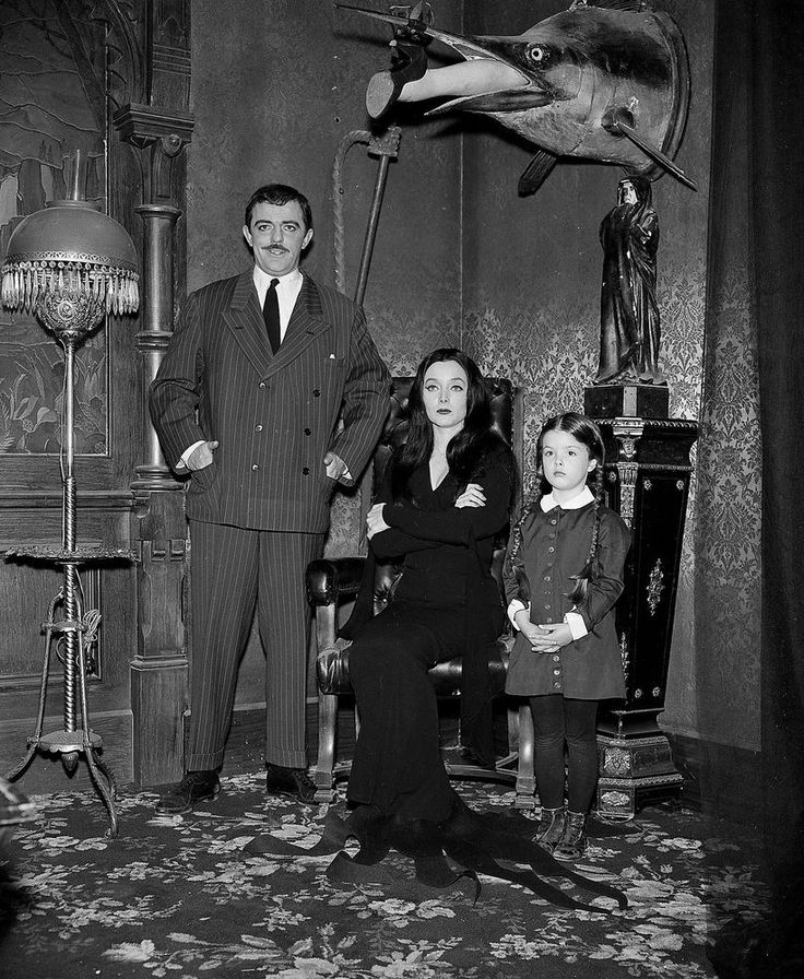 THE ADDAMS FAMILY - TV SHOW PHOTO #X28