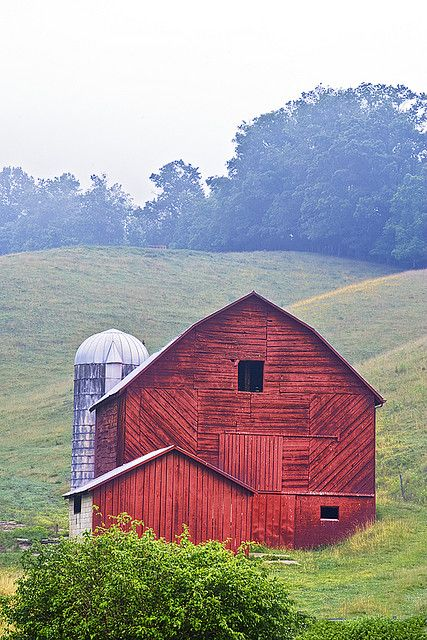 Beautiful Barn... ahh, rolling hillside! Imagine taking an old flattened cardboard box and racing down those hillsides in the summer.