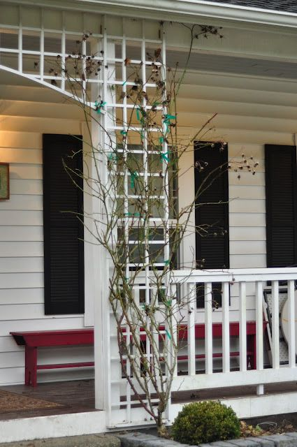 31 Best Images About Garage Trellis On Pinterest