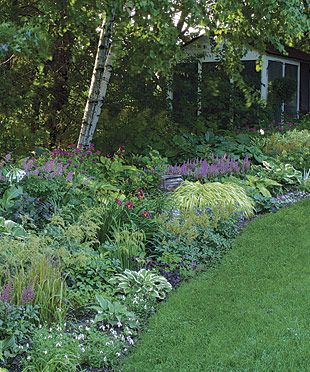 Shade garden with astilbe, hosta, japanese forestgrass, and toad lily
