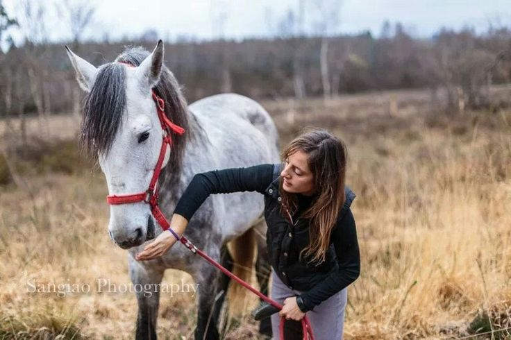 Sesión de #Fotos con #caballos #pre #pura #raza #español #hípica #Coruña