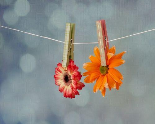 Feestversiering  Tijdens een feestje is niets zo vrolijk en persoonlijk als zelfgemaakte versiering. Hang bijvoorbeeld verschillende soorten en kleuren bloemen aan een lijntje. Dit is ook een origineel idee voor een tuinfeest!