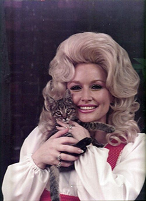 Country music queen, Dolly Parton, with her big hair and little kitty. http://kittyflix.com
