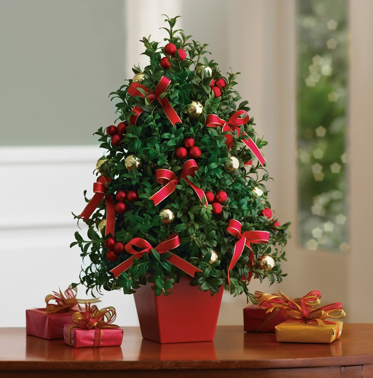 Deck the Halls Tree...love small decorated boxwood trees, nice hostess gift