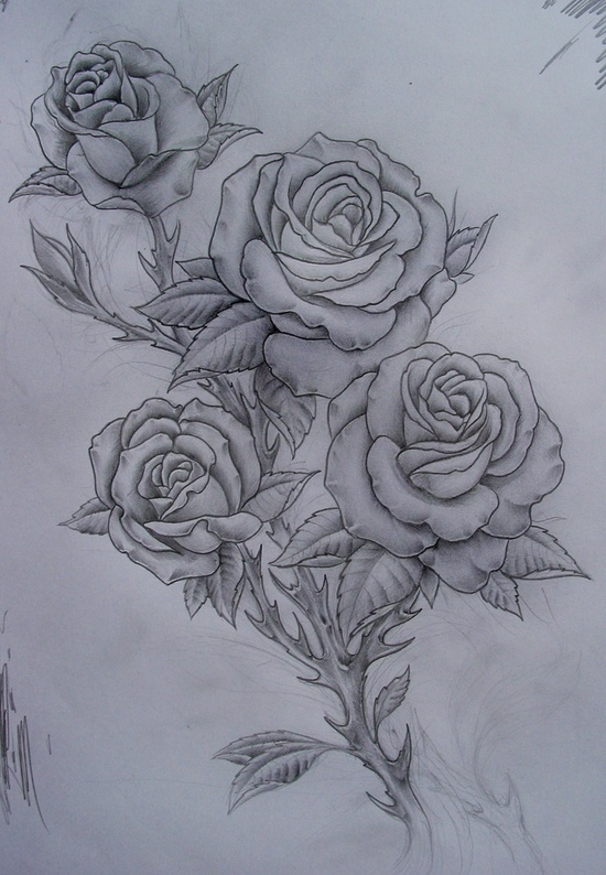 35 best pencil sketch drawings images on pinterest pencil roses tattoo ccuart Image collections