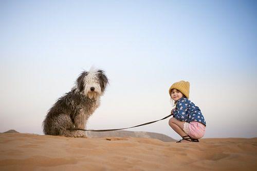 Como Cães e Gatos : Os melhores animais de estimação para as crianças ...