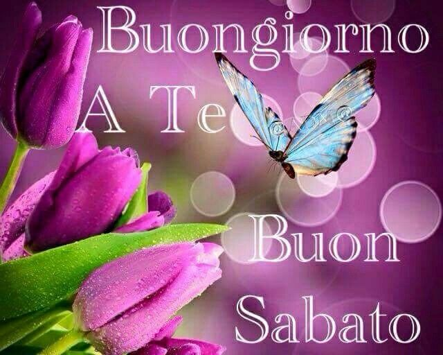 187 best buon sabato images on pinterest italia italy for Frasi buon sabato