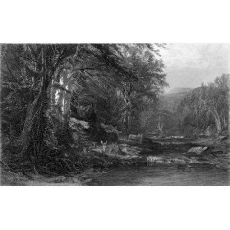 The Adirondack Woods ca1874 James McDougal Hart (1828-1901 American) Etching Canvas Art - James McDougal Hart (24 x 36)