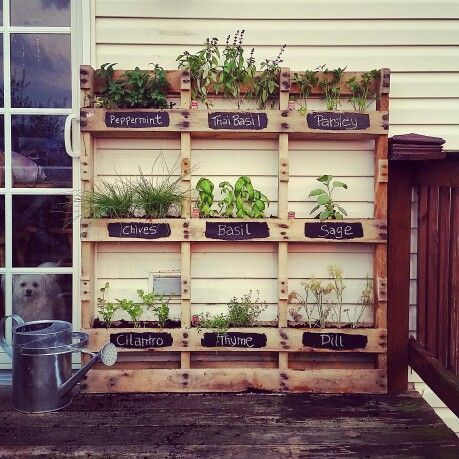 Are you looking for a pallet project? Here is a palette herb garden