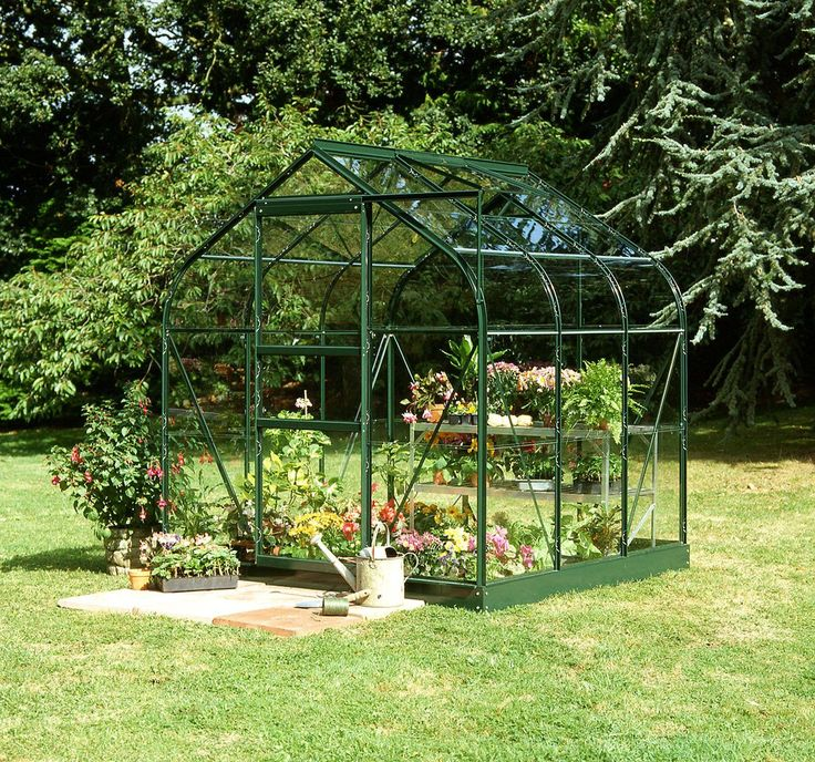 Halls Supreme Toughened Glass 6 x 6ft Greenhouse with Base.: Curved style Greenhouse with Single front sliding door and roof vent as…