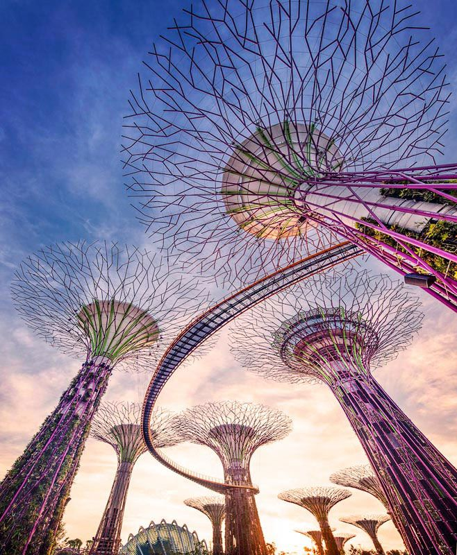 In 2011, Gardens by the Bay was opened in Singapore. The aim was to create  a city in a garden that would contribute to making the city more  comfortable to live in. During the design phase of Gardens by the Bay,  there was a lot of attention given to making the park eco-friendly. The  result is symbiosis that connects the different attractions of the park.