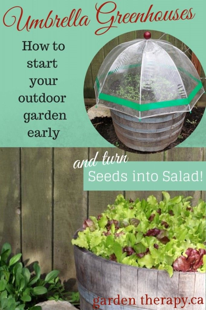 Umbrella Greenhouses - How to Start Your Outdoor Garden Early