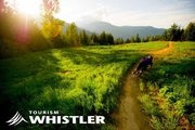 Departures daily from Vancouver International Airport and downtown Vancouver hotels to Squamish and Whistler providing door-to-door service to your Whistler accommodation.