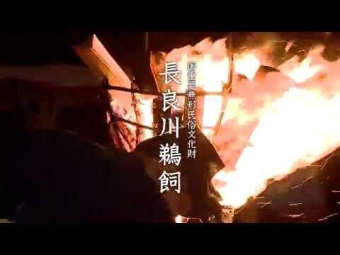 Conheça a espetacular pesca milenar: Nagaragawa Ukai (vídeo)   Portal Mie - Notícias e eventos do Japão