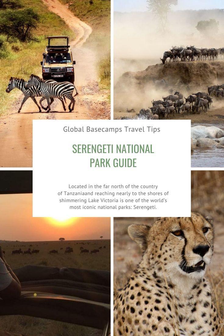 Serengeti National Park Guide In 2020 Serengeti National Park National Parks Serengeti