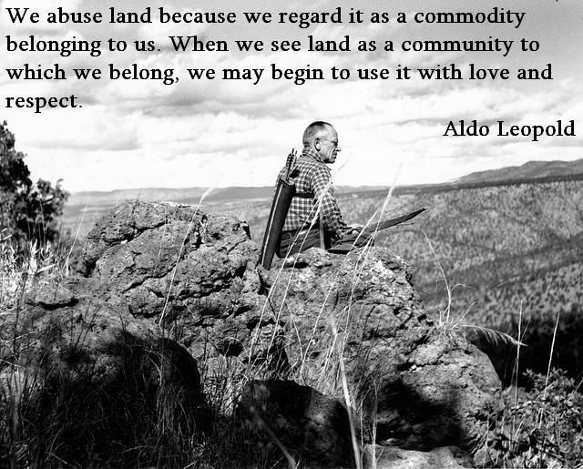 """""""We abuse land because we regard it as a commodity belonging to us. When we see land as a community to which we belong, we may begin to use it with love and respect."""" - Aldo Leopold"""