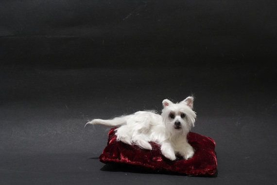OOAK Miniature West Highland White Terrier Westie by by malga1605
