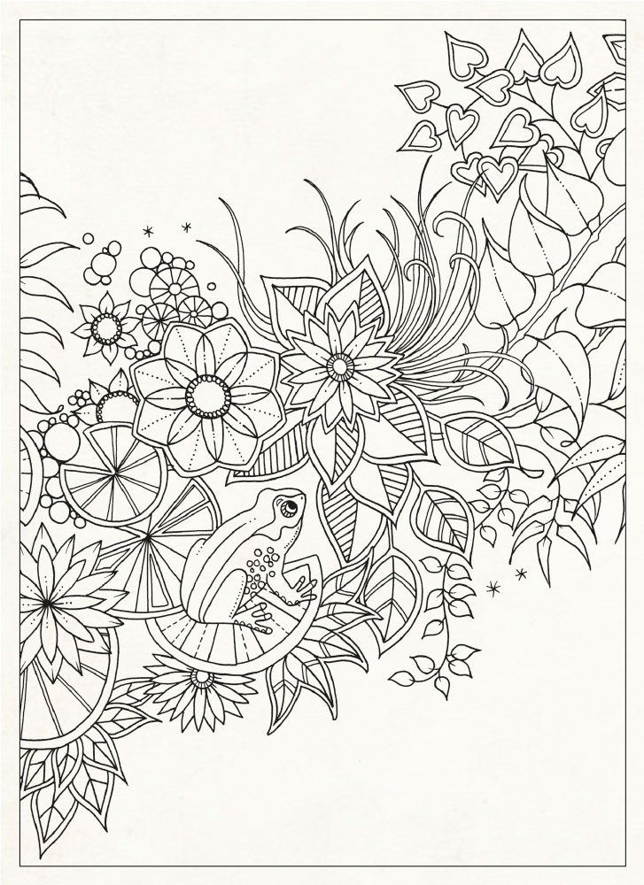 Coloring Pages For Grownups Secret Garden 20 Postcards Johanna Basford