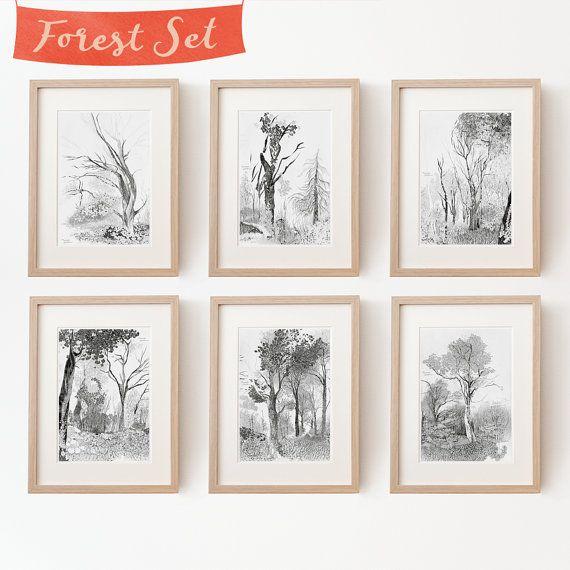 6 Baum Zeichnungen im Set Kunstdrucke von TheresaGrieben