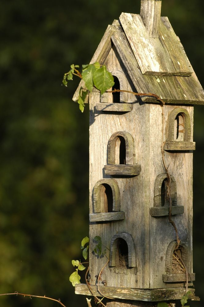 The vine crawling up the side is such a great addition to the already creatively whimsical birdhouse .