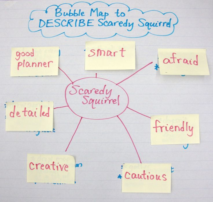 Coaching Young Readers and Writers : Scaredy Squirrel: Quite a Character!