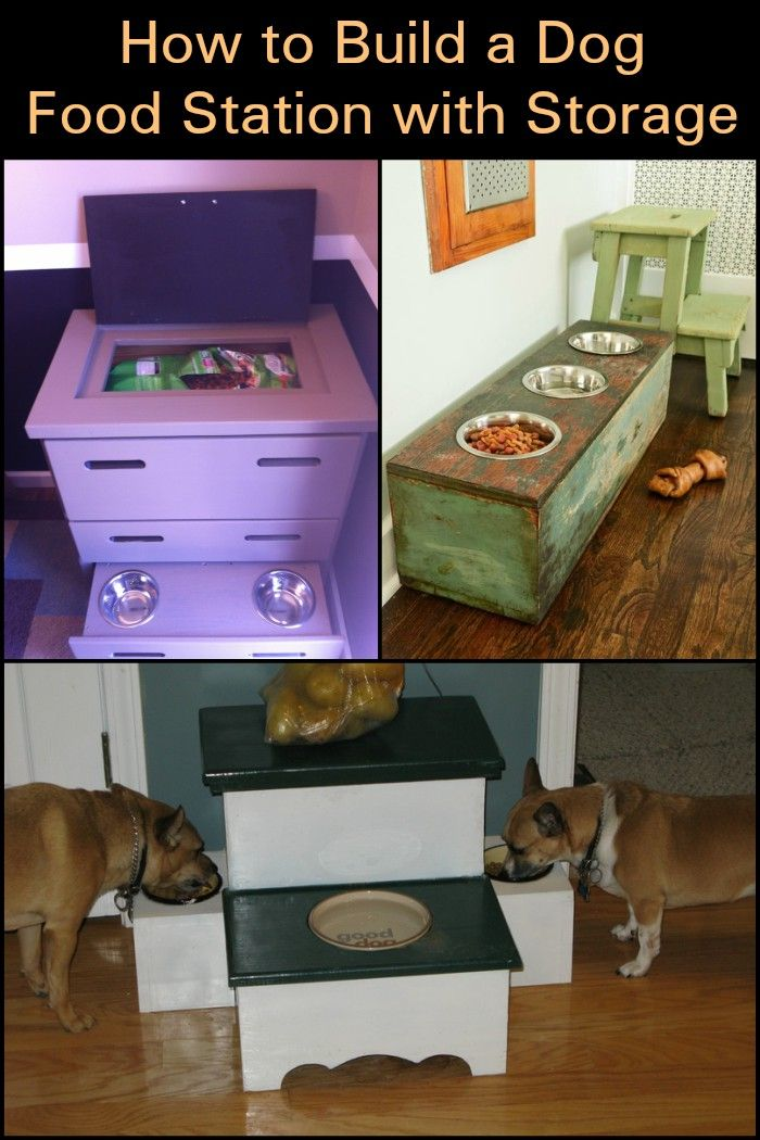 Build Your Dog a Convenient and Mess-Free Dog Food Station with Storage!