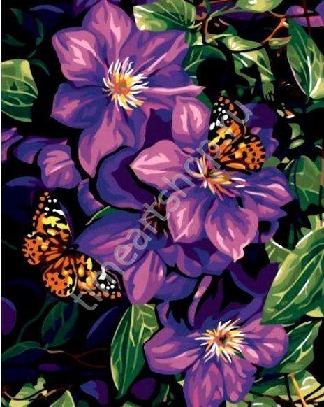 Аромат цветов и бабочки, картина раскраска по №, размер 40х50см