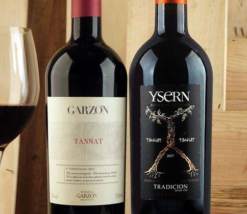 Confraria Degustação: A Tannat veio para ficar #vinho #clubedevinho #confrariaseloreserva #tannat #degustacao