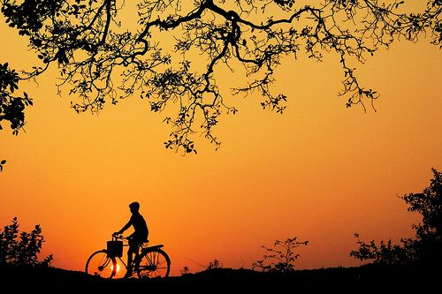 A Sunset Composition