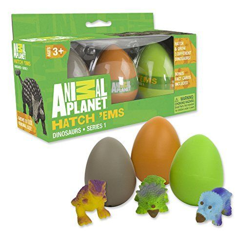 Animal Planet Grow Eggs- Dinosaur - Hatch and Grow Three Different Super-Sized Dinos (Series 1) - Toys 4 My Kids