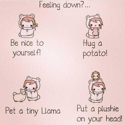 Find and save ideas about Llamas on Pinterest.  See more ideas about Cute llama, Llama pictures and Pics of llamas. Llamas wallpaper, Llama gift, Llama picture, Llama quote, cute llama, home decor, inspirational quote, Be a Llama, christmas gift, quirky gift,