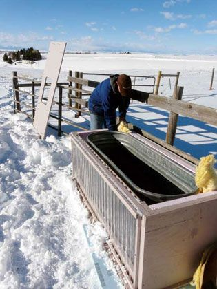 How To Keep Livestock Water From Freezing - Homesteading and Livestock - MOTHER EARTH NEWS