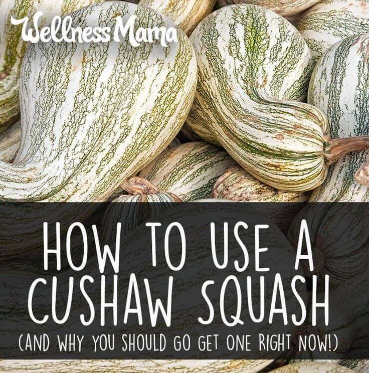 Cushaw squash is a great substitute for pumpkin and other winter squashes and is great roasted, in soups, in smoothies or even for dessert.