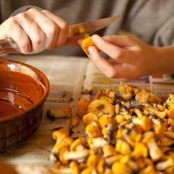 Muszelki z grzybami i kurczakiem w śmietanie @ allrecipes.pl