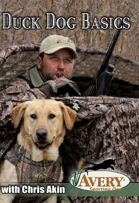 Avery Chris Akins Duck Dog Basics Hunting Dog Training Video at MacksPW.com