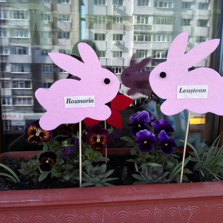 Marcatoare rasad iepuras #manukdeco #iepure #fetru #decoratiuni #handmade Pret: 3 lei